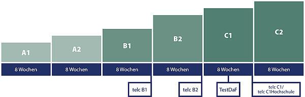 Carl Duisberg Kurssystem - Durchschnittliche Lernfortschrittsdauer pro Stufe